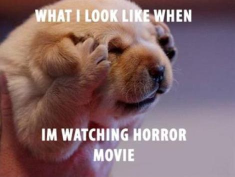 When-i`m-watching-horror-movie
