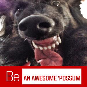 beanawesomepossum selfie