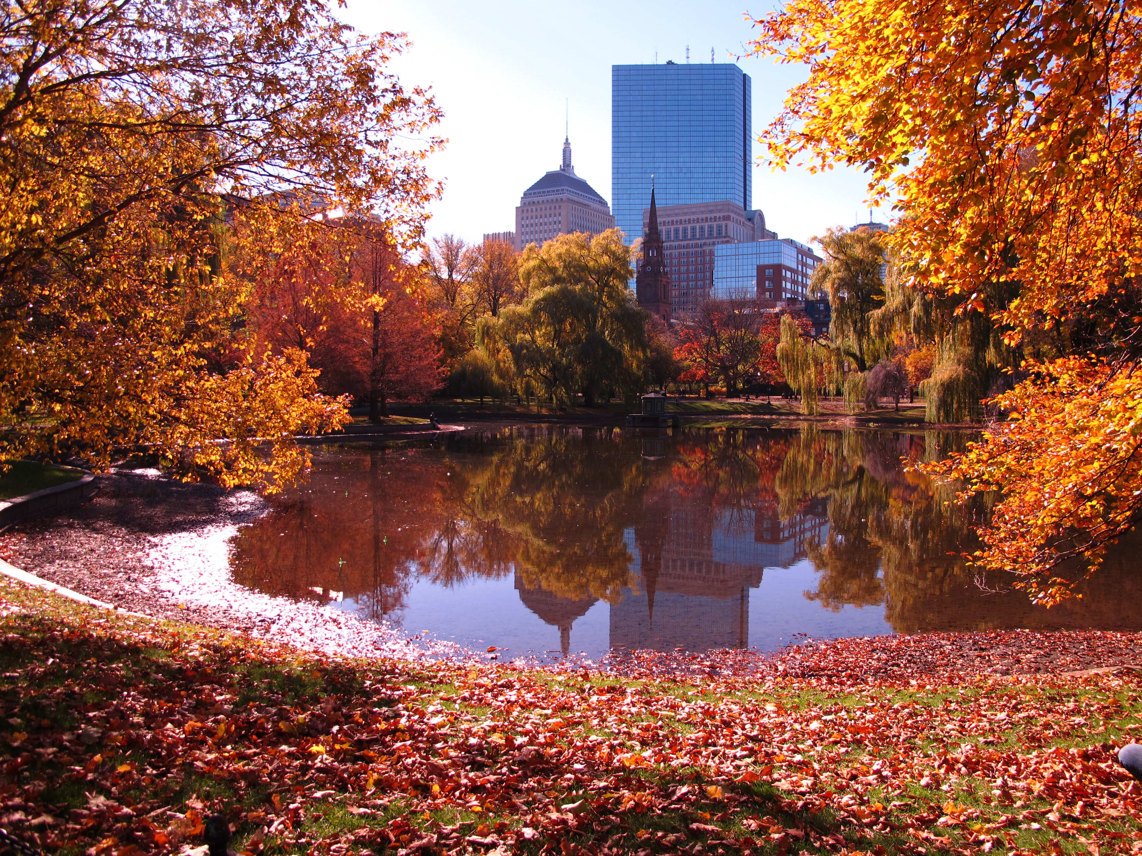 The 5 Best Things About Fall In Boston   NU Student Life