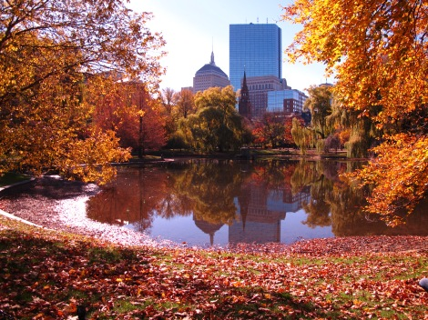 boston fall