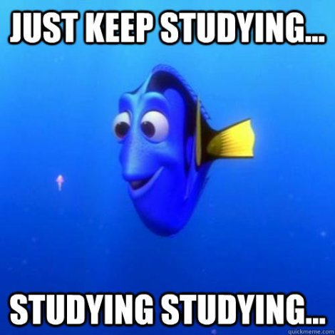 just keep studying