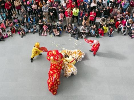 chinese new year mfa